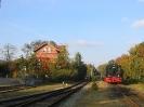 V 36 412 am 13.10.2007 in Spelle.