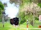 Fahrt auf der Steyrtalbahn (760 mm)  am 1.5.2019